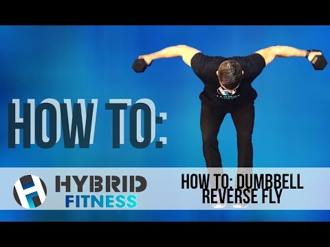 How to: Dumbbell Reverse Fly