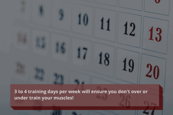 train 3 to 4 days per week when trying to gain muscle