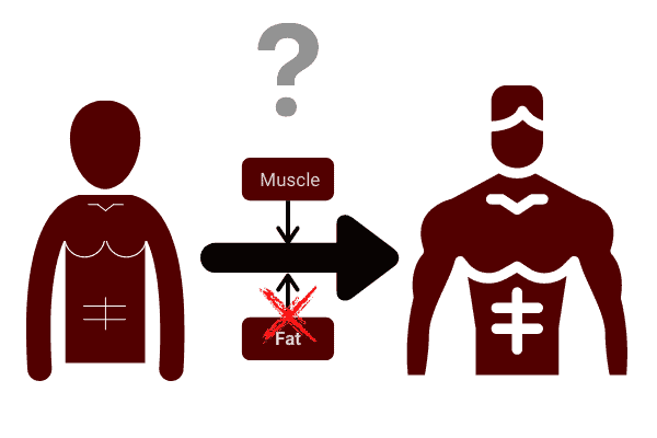 diagram showing how you can bulk without losing your abs?