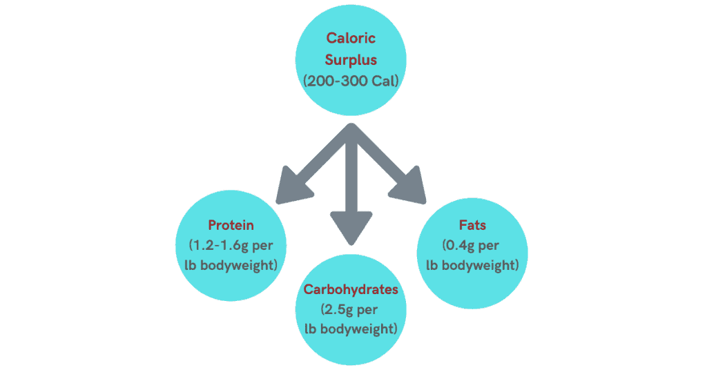 diagram which shows you need to consume proper nutrition to grow the arm muscles