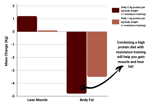 bar chart to show that a high protein is required to bulk without losing your abs