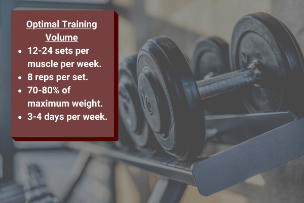 optimal training volume for a bulk and cut