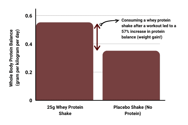 bar chart showing protein shakes can help skinny people gain weight