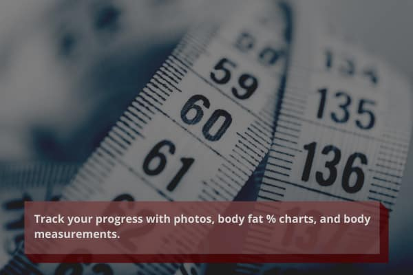 track your home muscle gains with photos, body fat % charts, and body measurements