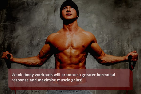 include whole body workouts when you are gaining muscle at home