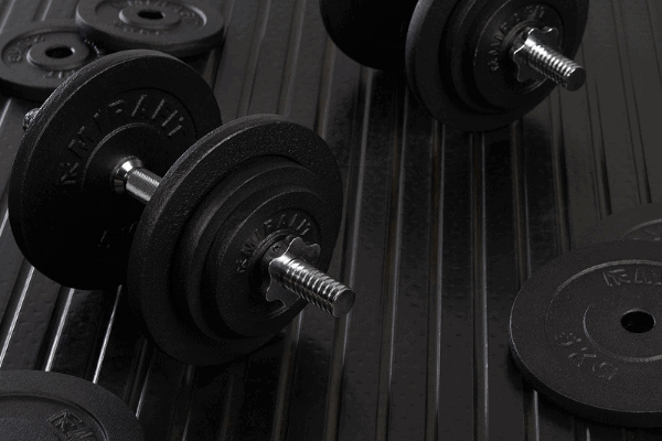 adjustable plate dumbbells are the cheapest