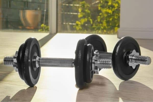adjustable plate dumbbells are a cheap free weight for a home gym