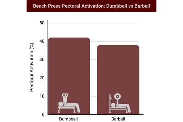 Bar chart showing bench dumbbell bench press activates pectorals more than barbell bench press