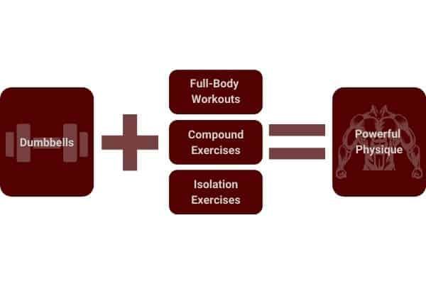 dumbbells can be used to build muscle