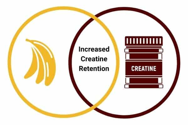 infographic to show bananas help increase creatine retention which helps build muscle