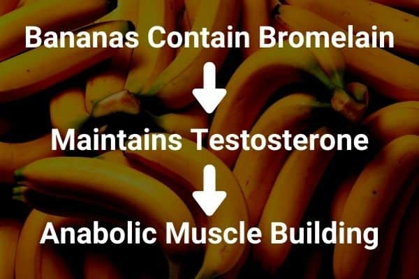bananas help build muscle because they contain bromelain which helps maintain anabolic testosterone