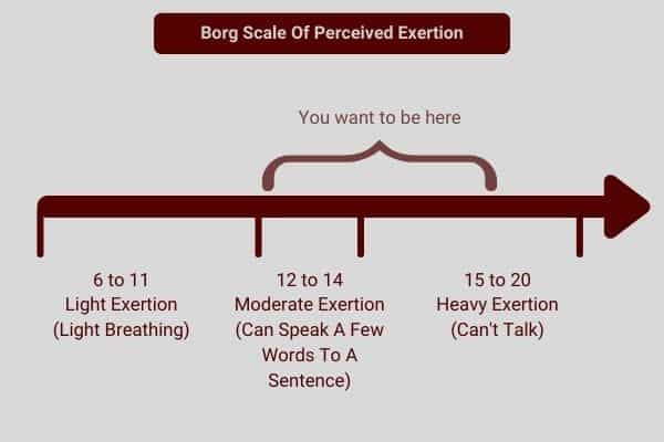 diagram to show borg scale of perceived exertion can be used to judge an effective dumbbell workout