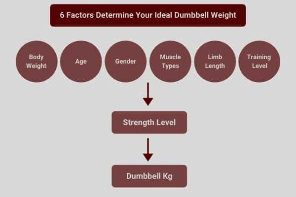 6 factors determine your ideal dumbbell kg weight