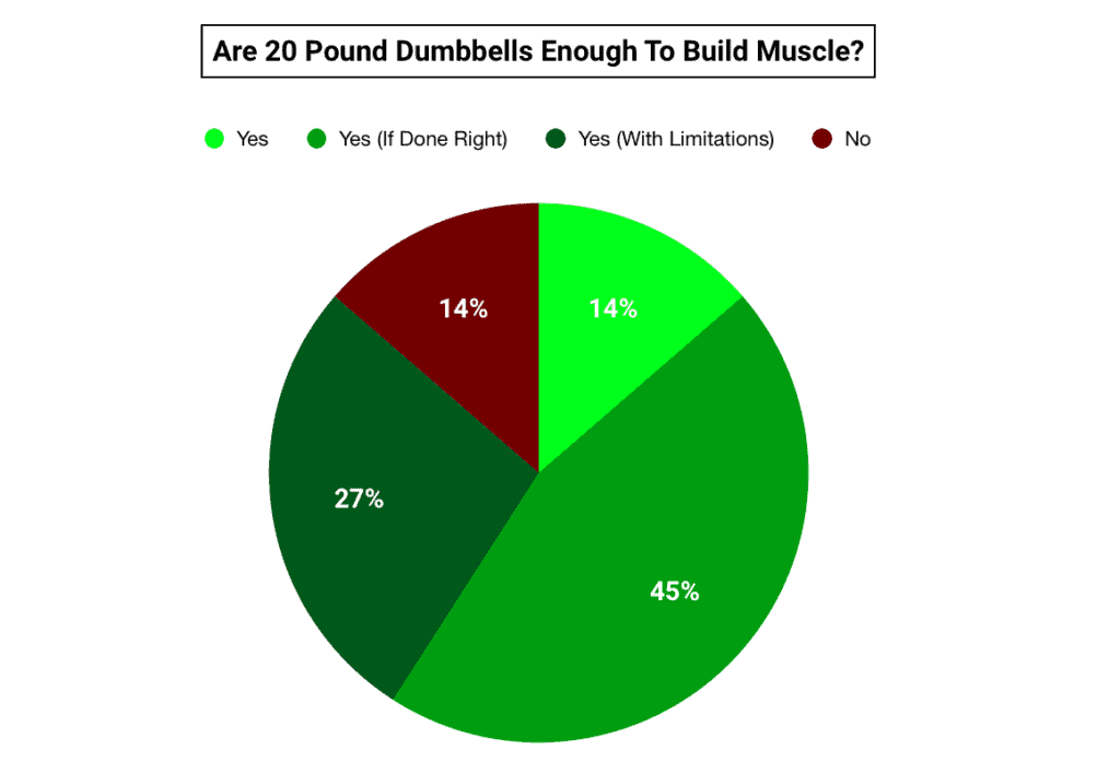 pie chart showing 20lb dumbbells are enough to build muscle