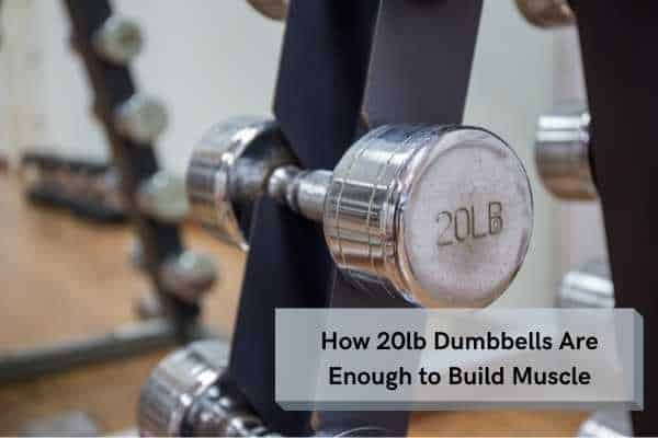 how 20lb dumbbells are enough to build muscle
