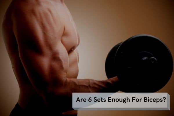 are 6 sets enough for biceps
