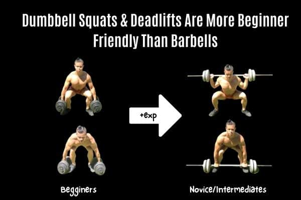 dumbbell squats and deadlifts are good for beginners