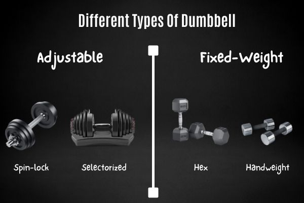 Different types of dumbbells include spin-lock, selectorized adjustable, hex, and hand weight dumbbells