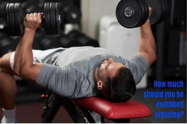 Respectable dumbbell bench press weight