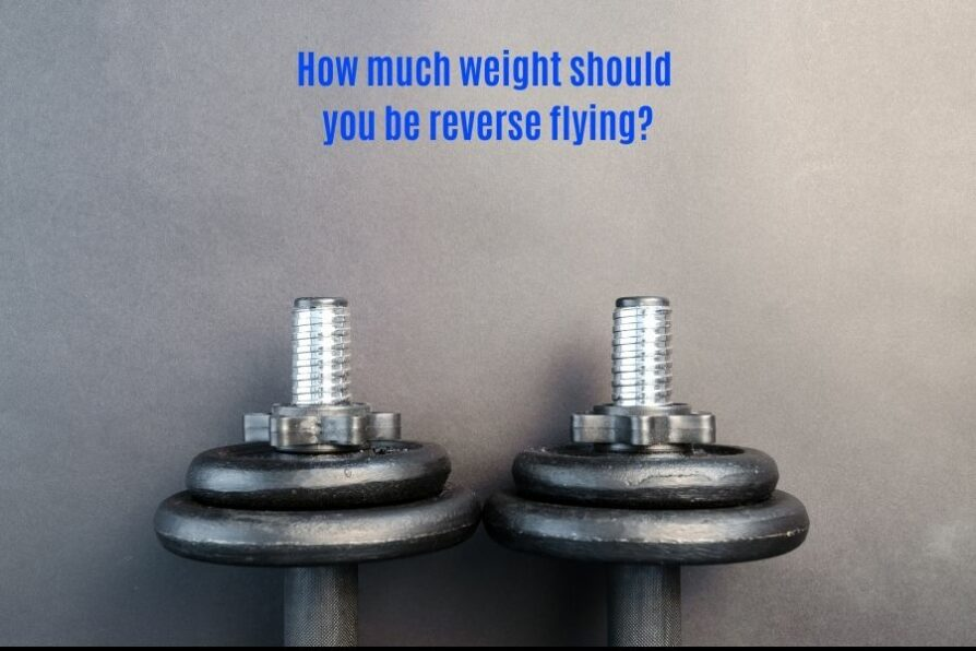 Reverse fly weight standards